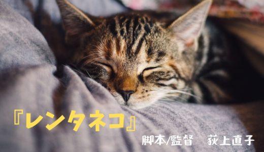 【映画 No.8】〜心の穴ぼこ、なにで埋める?寂しい人に、ネコ、貸します〜 『レンタネコ』